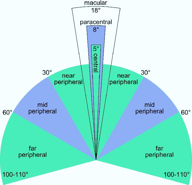peripheral vision chart