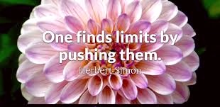 quote about pushing your limits