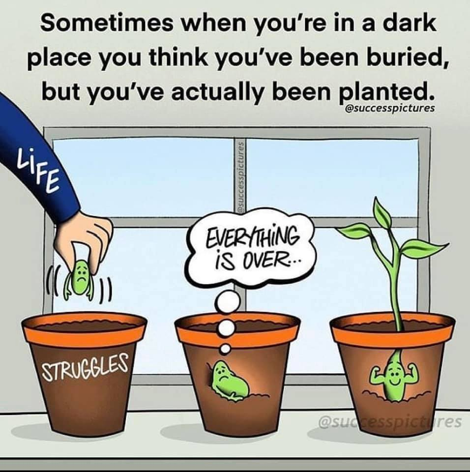 struggle can lead to growth
